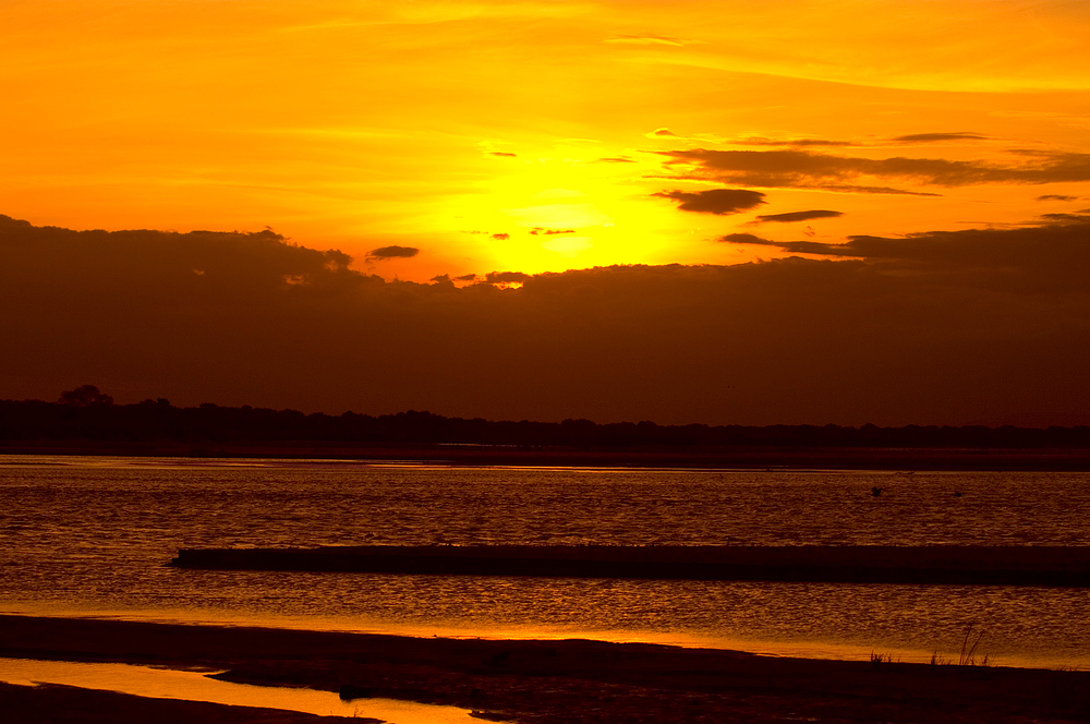 TANZANIA Selous Schutzgebiet 20