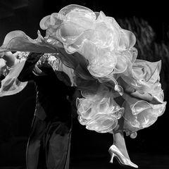 Tanzbeine beim Wiener Walzer