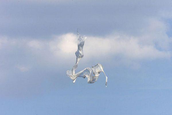 Tanzendes Netz am Himmel -1