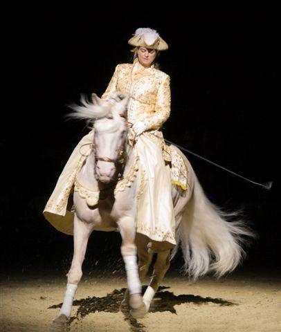 tanzendes Pferd