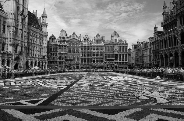 Tapis de fleurs à la Grand Place de Bruxelles