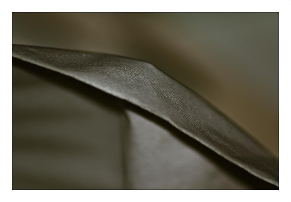 Taschentuch 1