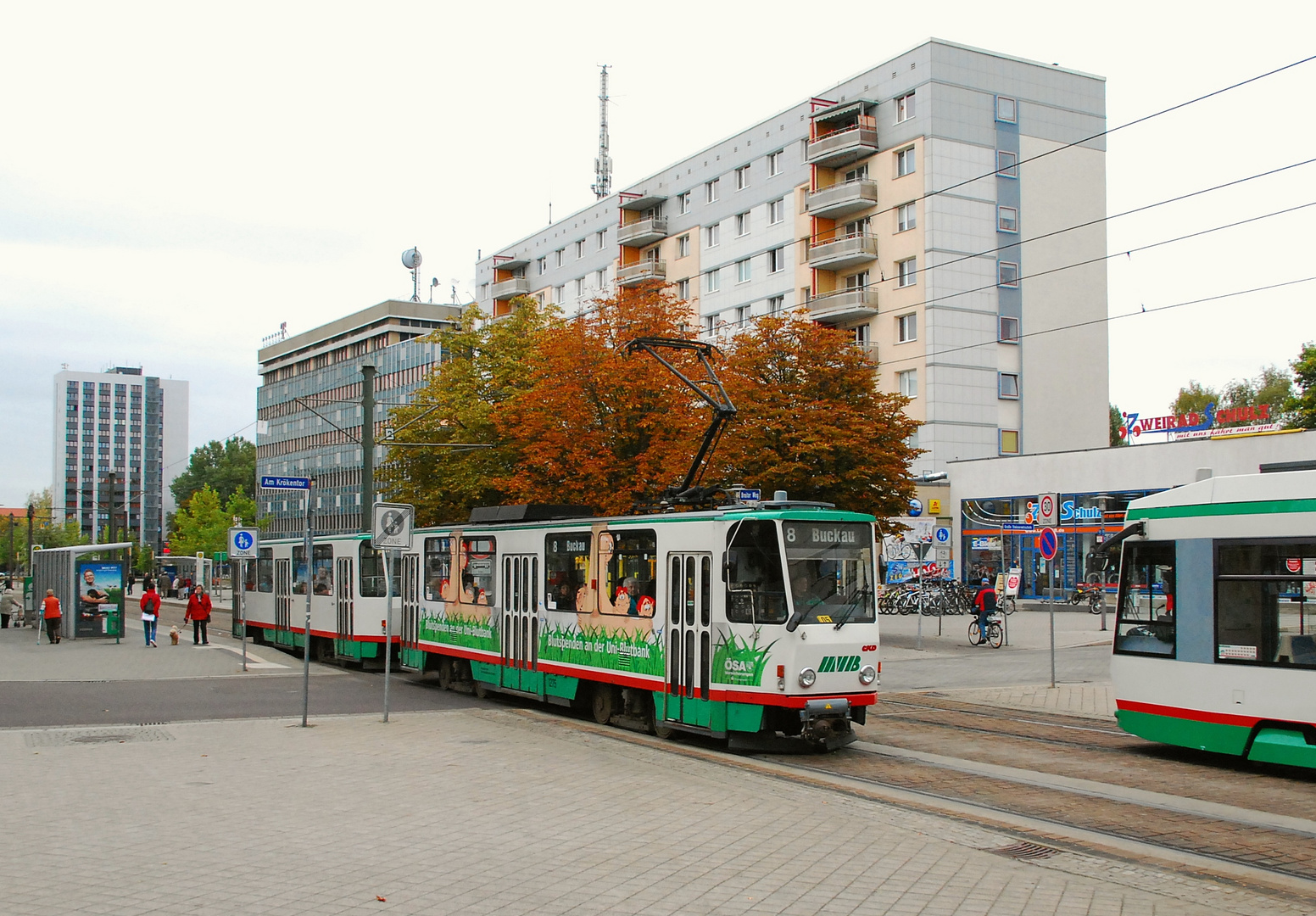 tatra herbst in magdeburg 4 foto bild bus nahverkehr stra enbahnen verkehr fahrzeuge. Black Bedroom Furniture Sets. Home Design Ideas