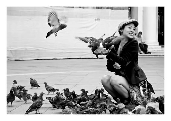 Tauben auf dem Markusplatz (SW)
