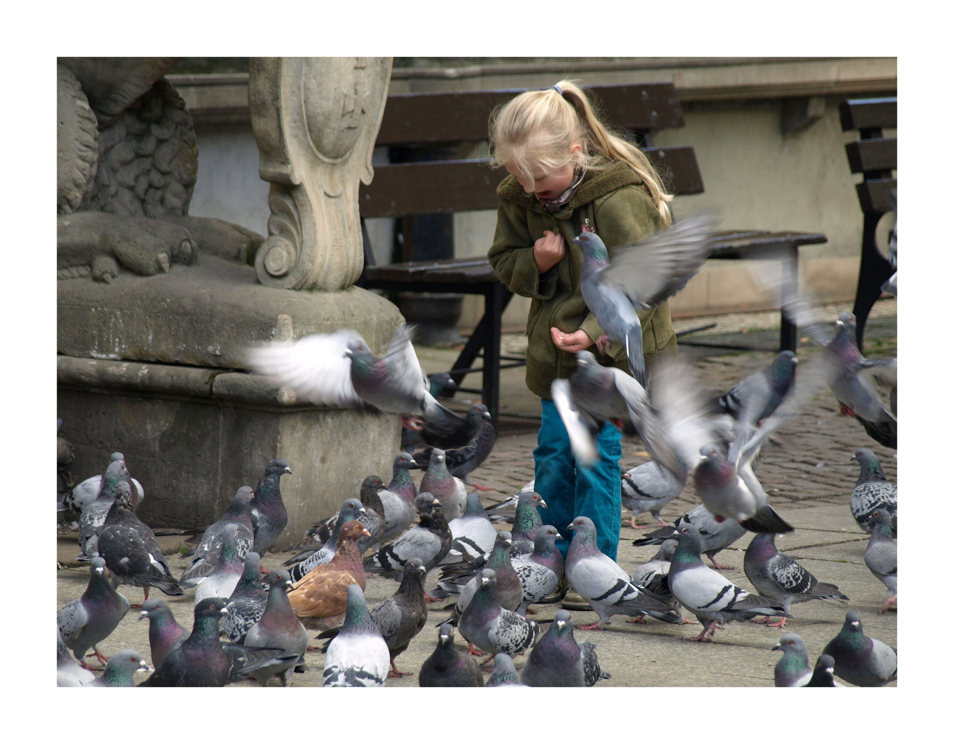 Tauben füttern... in Danzig