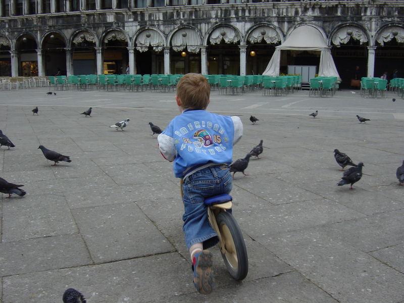 Taubenjagd auf der Piazza San Marco