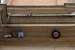 Taubenvergrämung