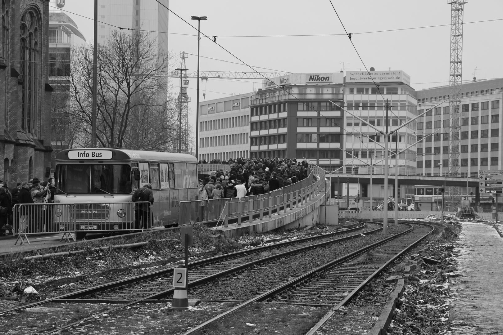 Tausendfüßler in Düsseldorf (3)