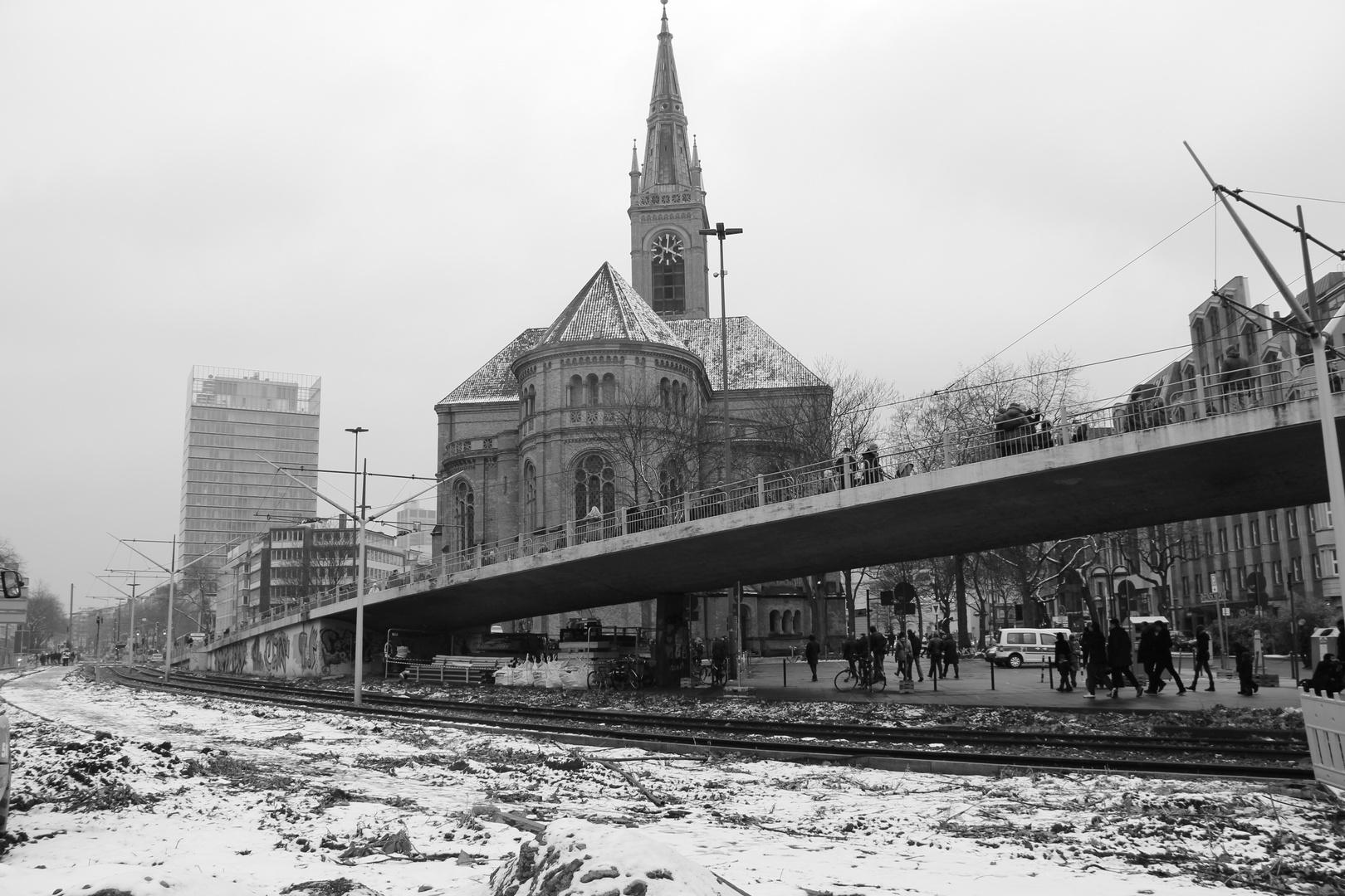 Tausendfüßler in Düsseldorf