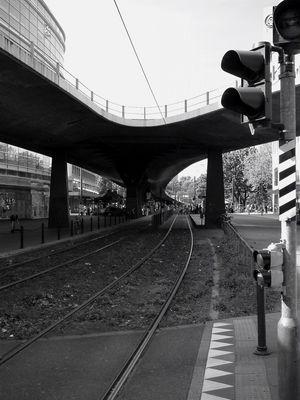 Tausendfüssler in Düsseldorf ... wohl bald Vergangenheit.
