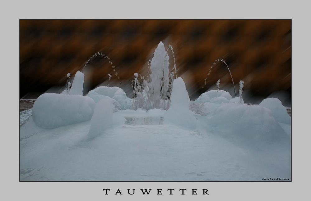 Tauwetter