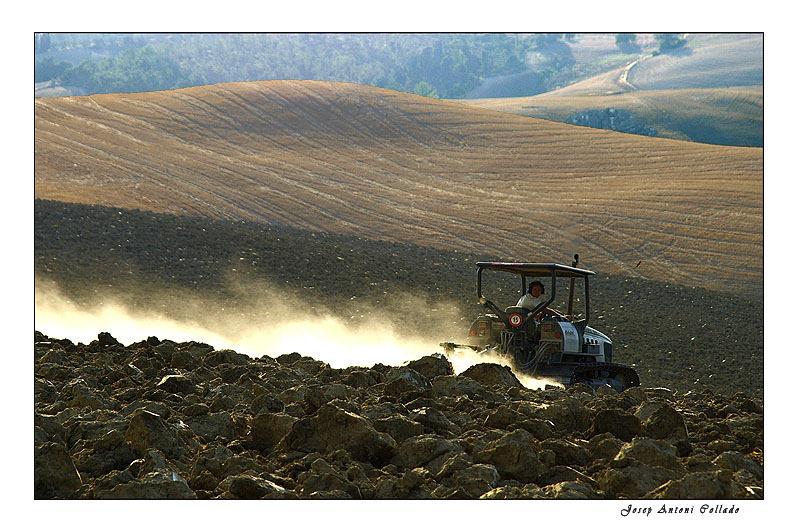 Teballant la terra - Working the land