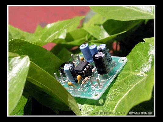Technik und Natur
