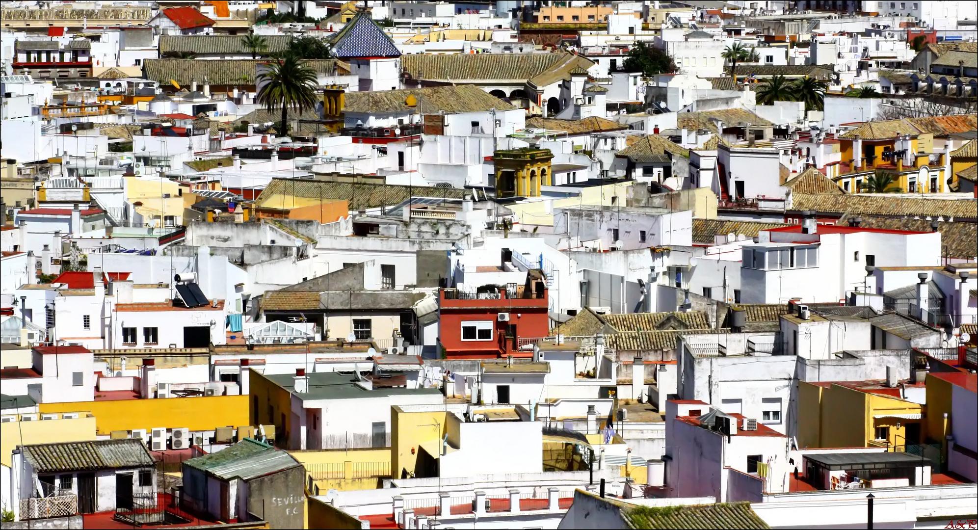 Techos y Terrazas - Sevilla.-
