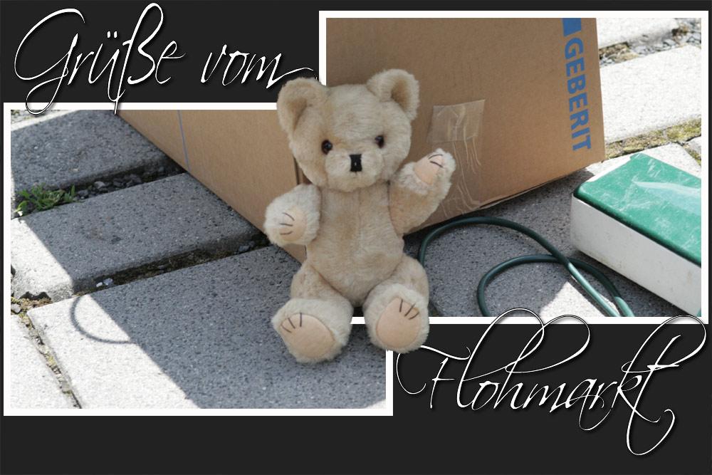 'Teddy' grüßt den Rest der Welt....