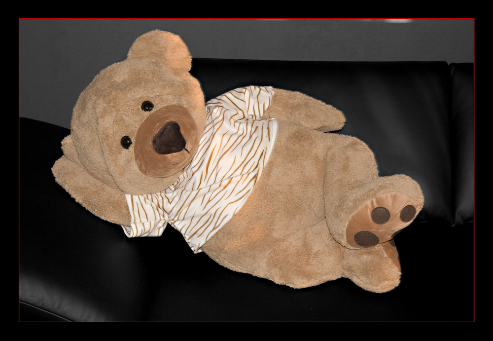 Teddy Lightroom VI