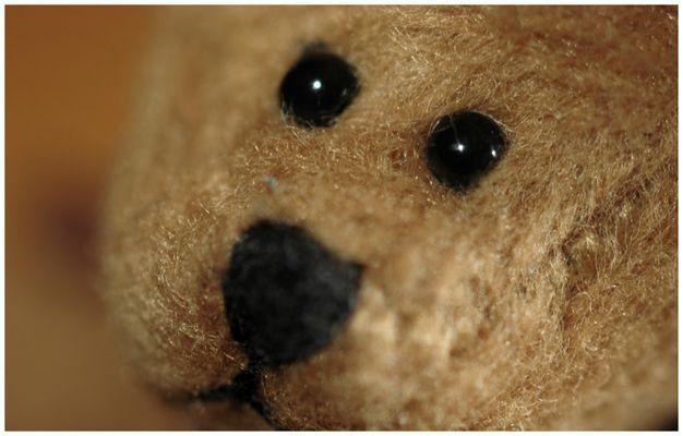 Teddyaugen