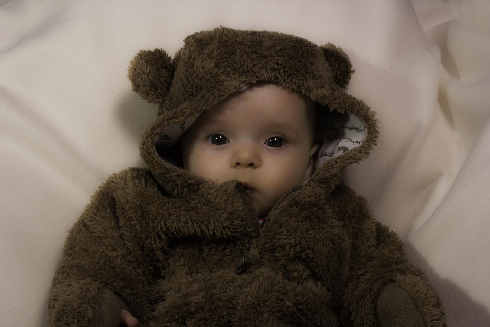 Teddybärchen