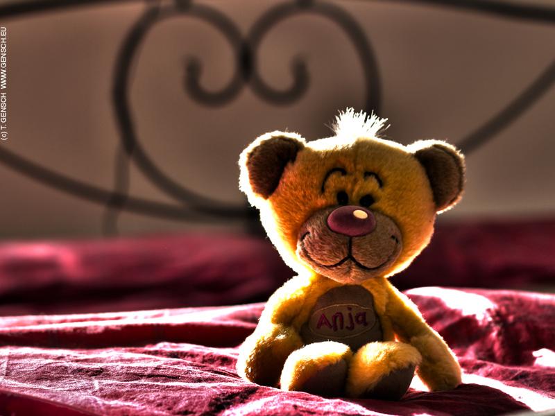 Teddybärchen auf Kuschelkurs
