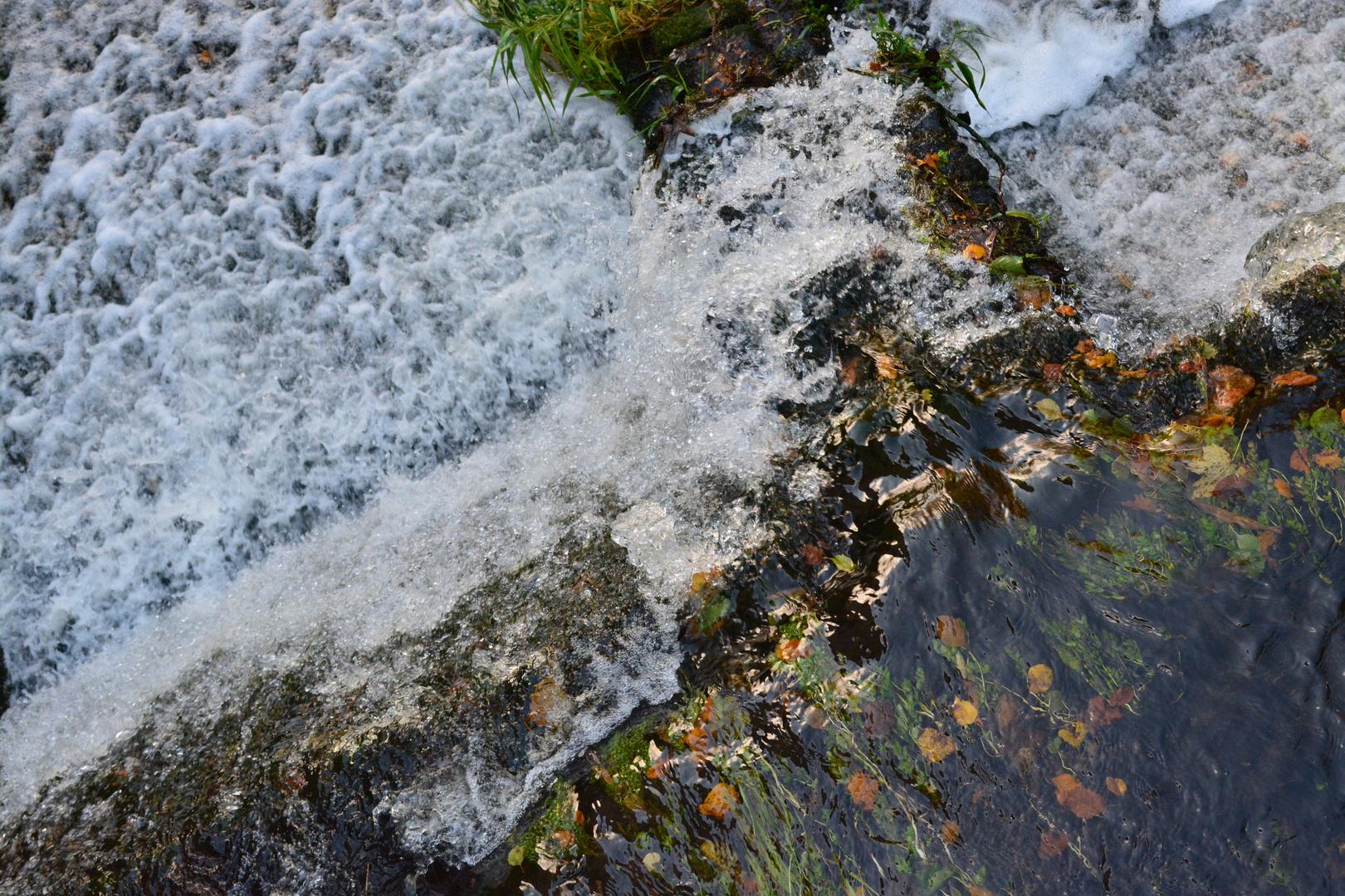 Tegeler Fließ
