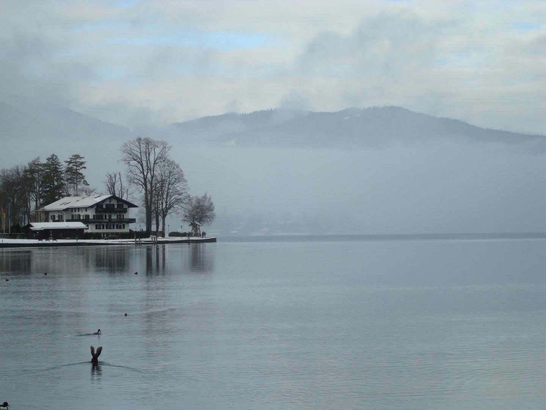 Tegernsee..in nebel