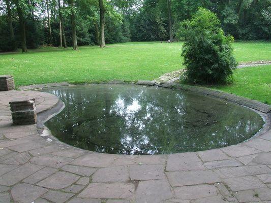 Teich als Spiegel