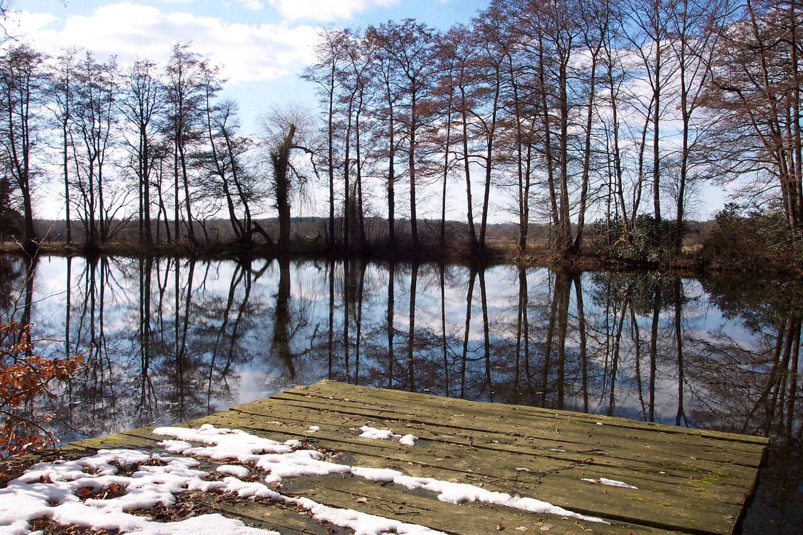 Teich Gut Hohehorst