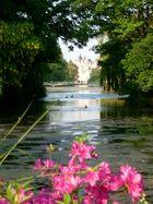 Teich im James Park / London
