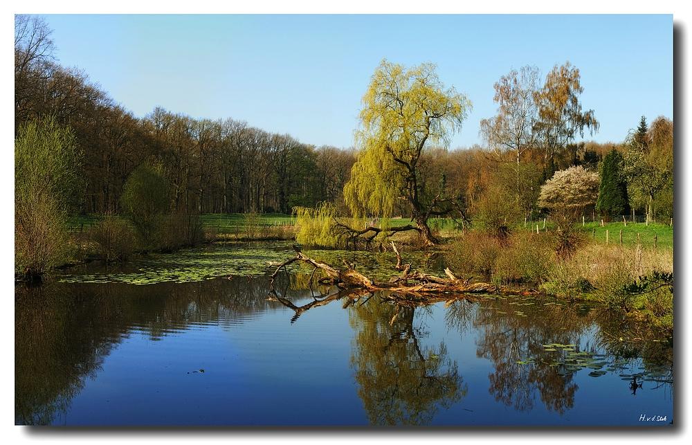 Teich im Münsterland