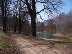 Teich im Oederaner Stadtwald