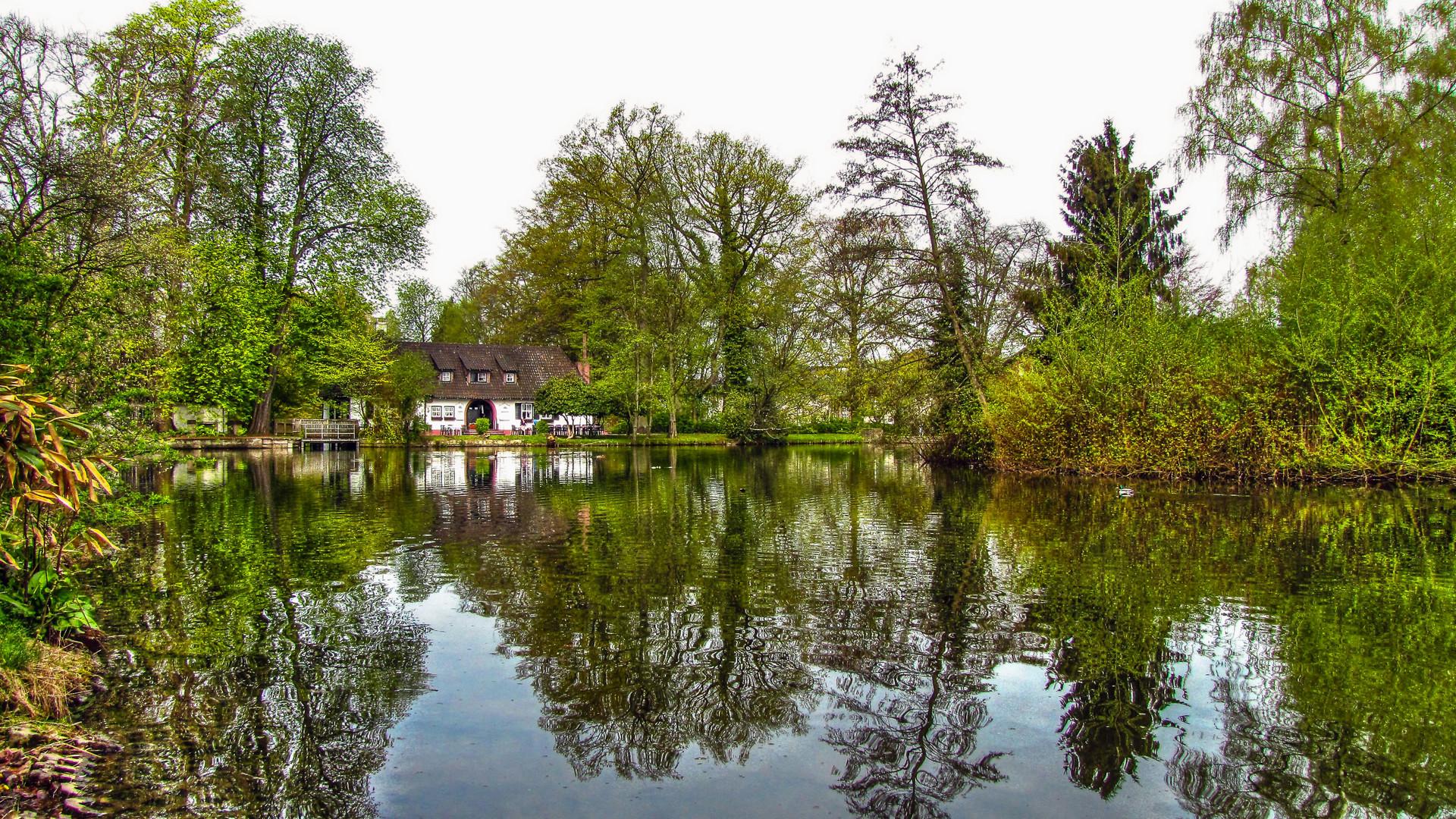 Teich in Holzminden