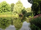 Teich mit Wasserspiegelung