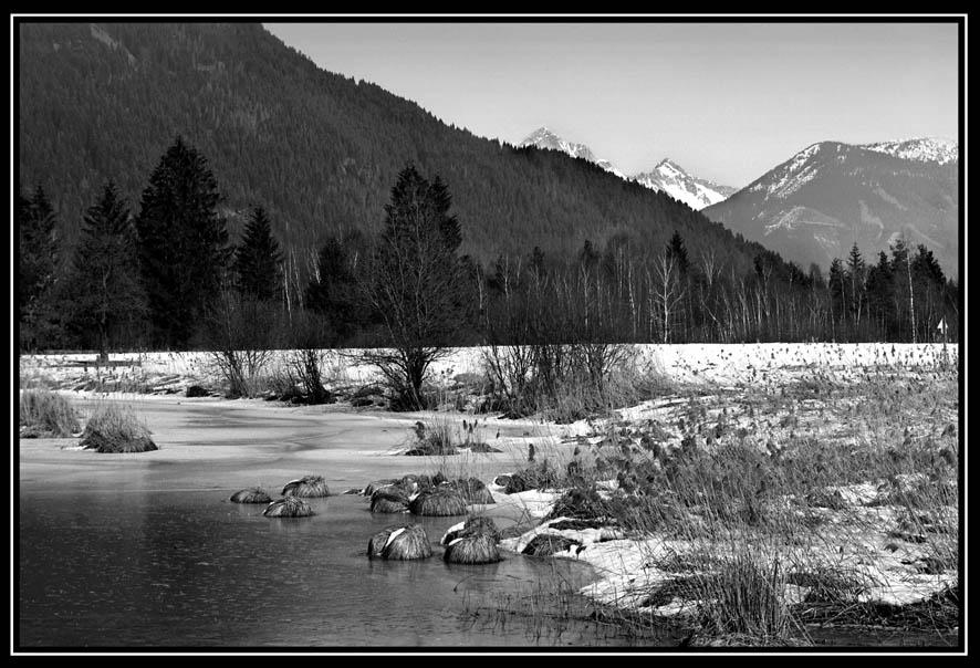 Teichlandschaft im Winter