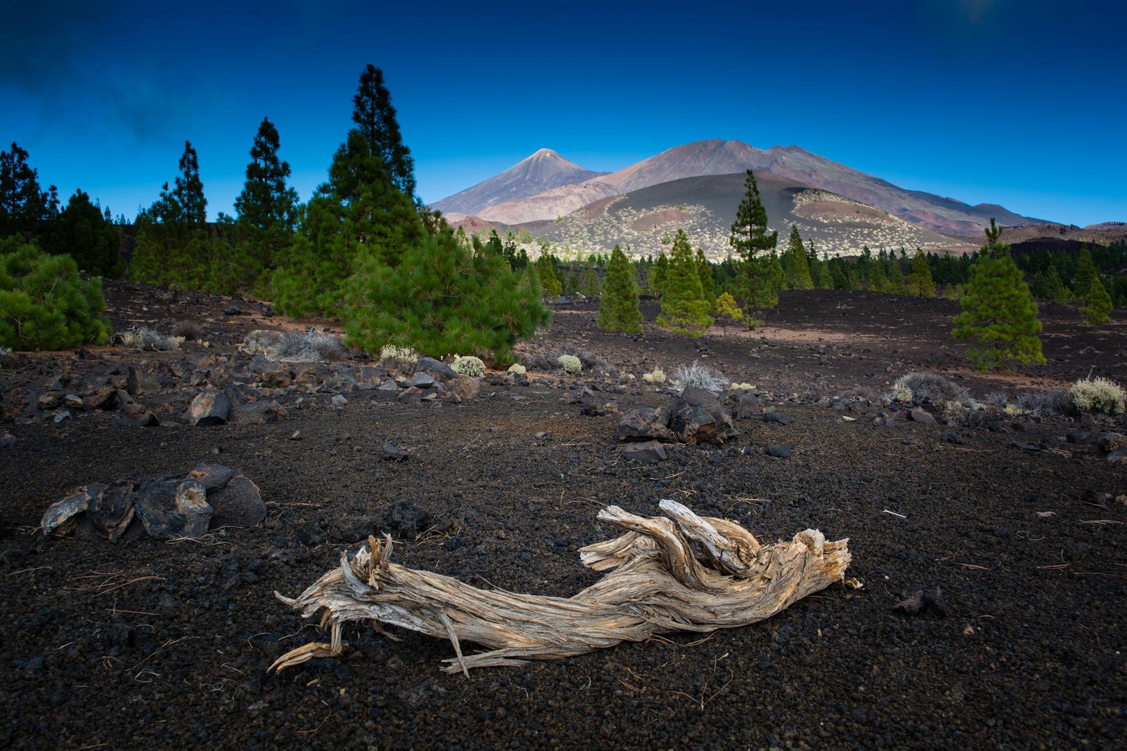 Teide Landschaft
