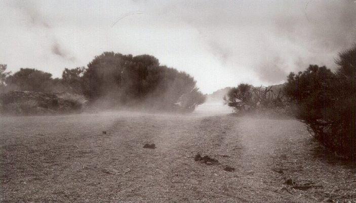 Teide Nebel [1]