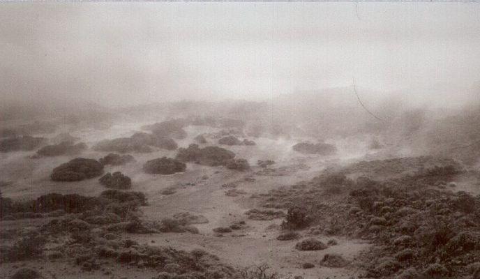 Teide Nebel [2]