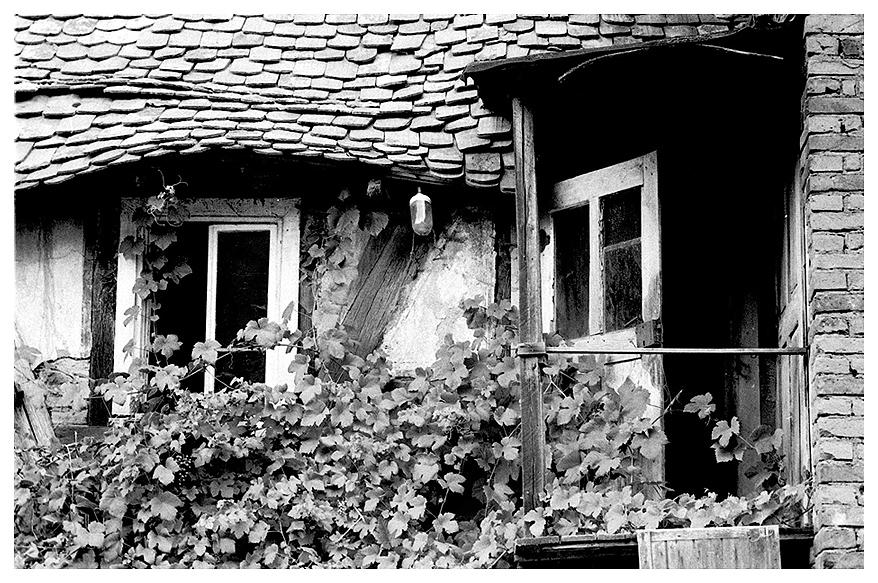 Teil einer alten Mühle