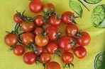Teil meiner Tomatenernte (stolz wie Oskar!!)