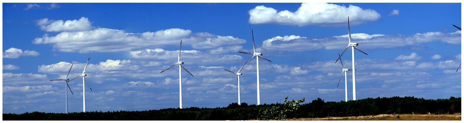 Teil vom Windpark Klettwitz   (1)  / Brandenburg