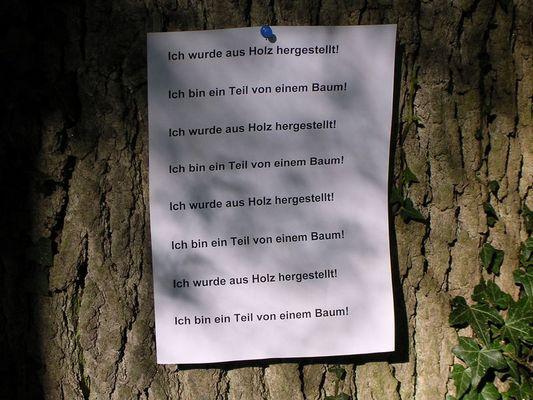 Teil von einem Baum!