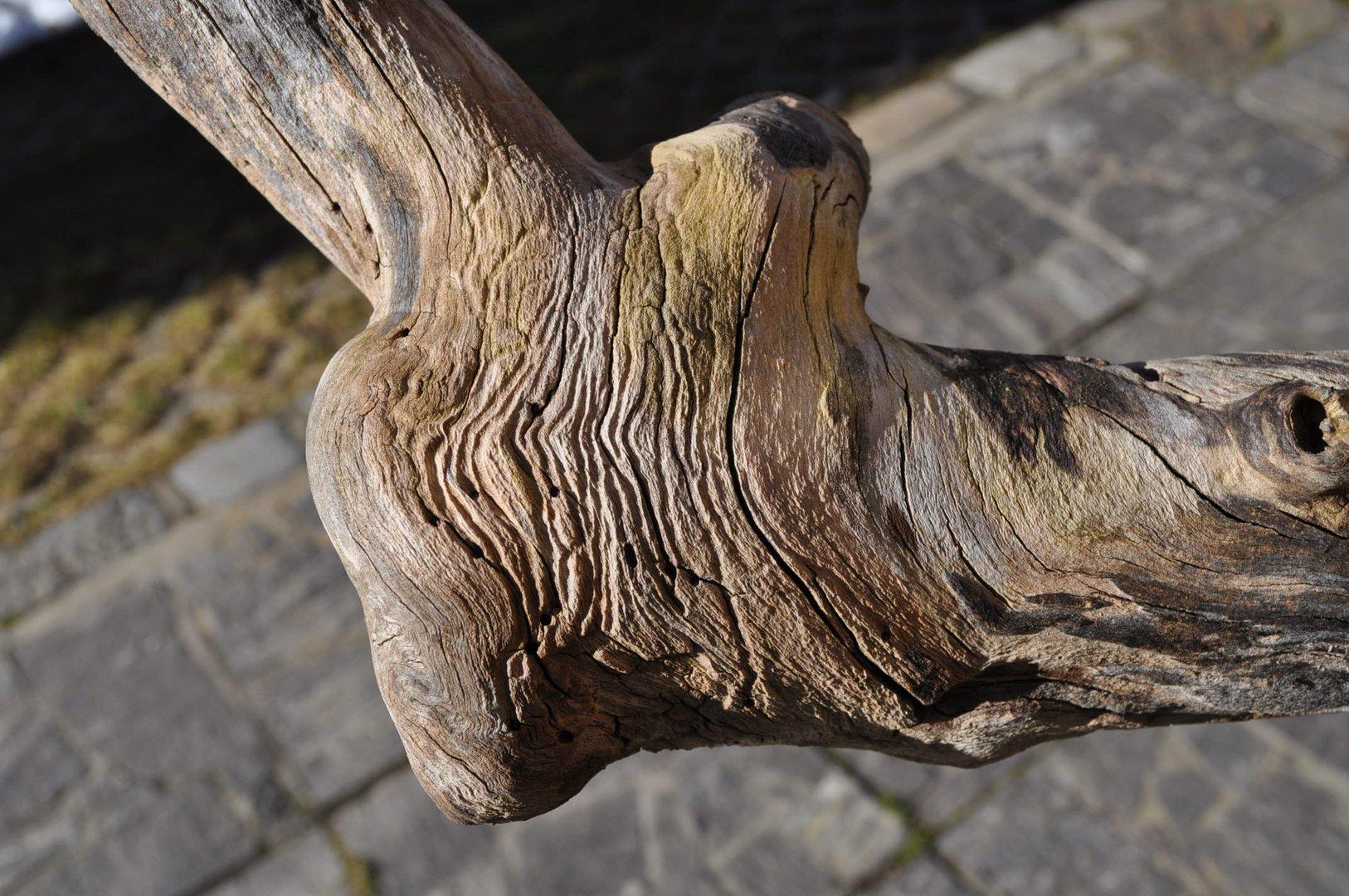 Teilaufname der linken Hand meines Gartengeistes....