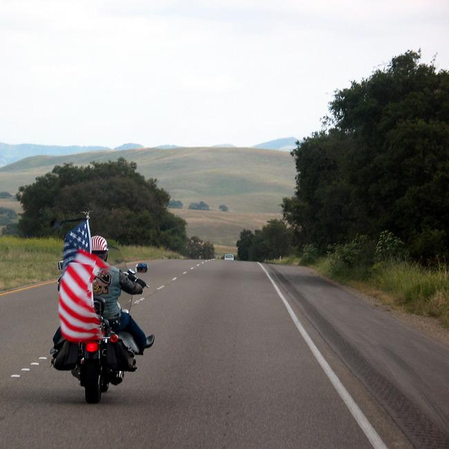 teilnehmer beim inoffiziellen wettbewerb zum patriotischsten patrioten...