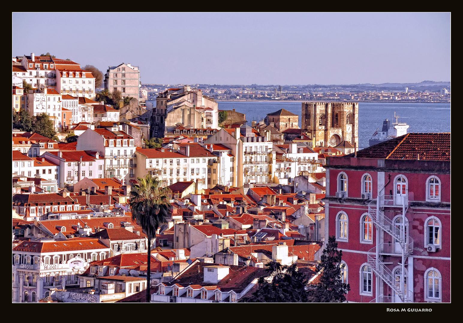 Tejados de Lisboa (I)
