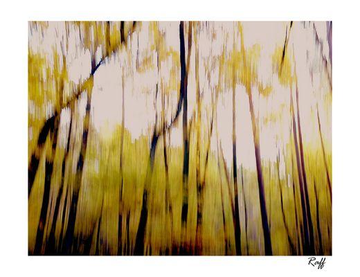 tela d'autunno