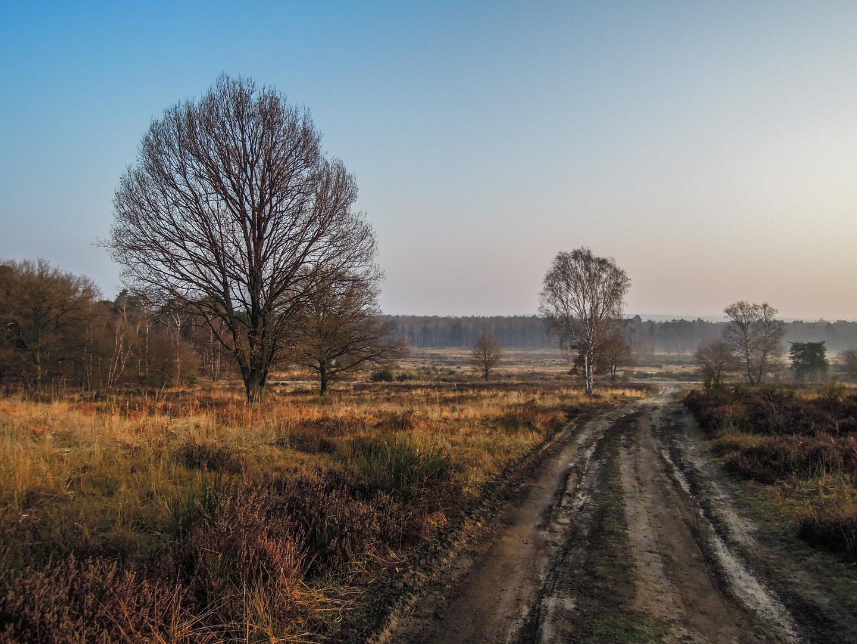 Telegrafen Heide