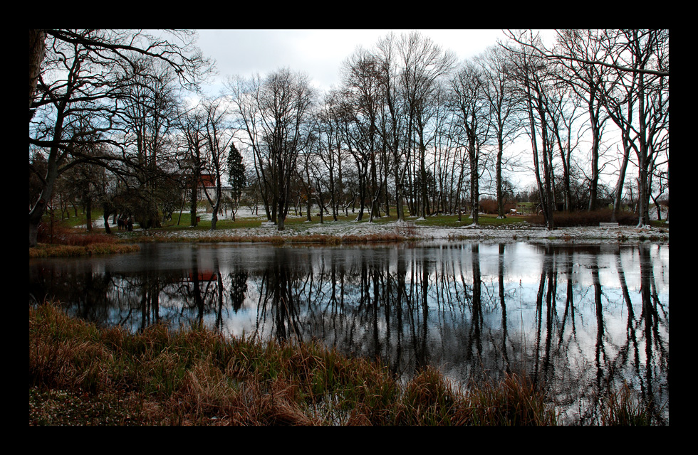 tellow im park