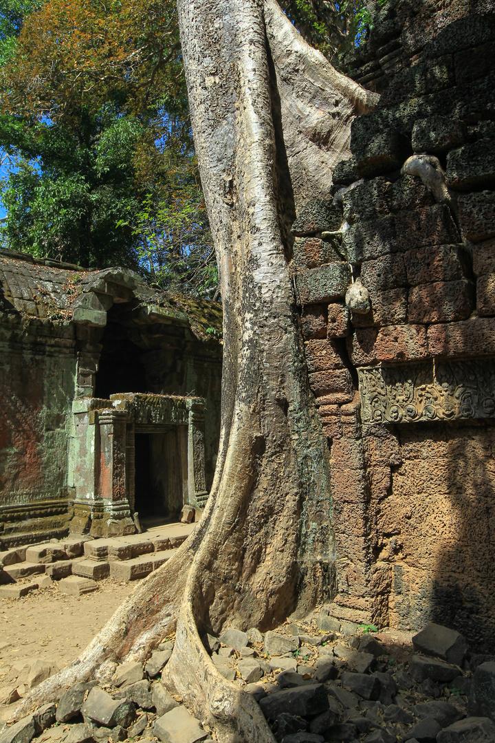 Tempel mit Baum 2