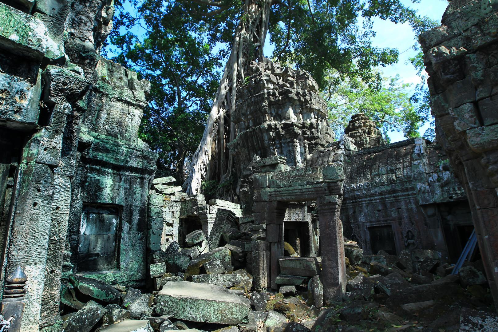 Tempel mit Baum 4