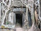 Tempeleingang  Ta-Prohm bei Angkor Wat