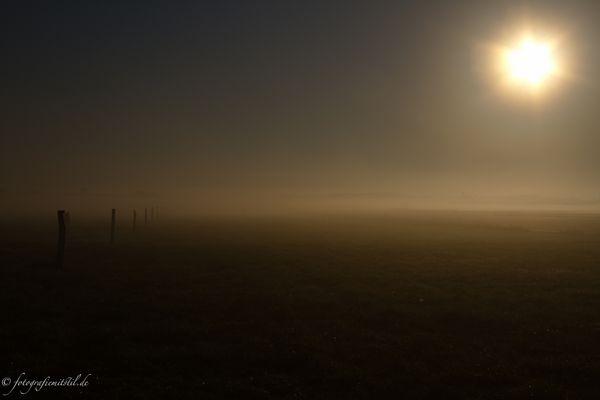 Tempelhofer Flughafenfeld bei Sonnenaufgang